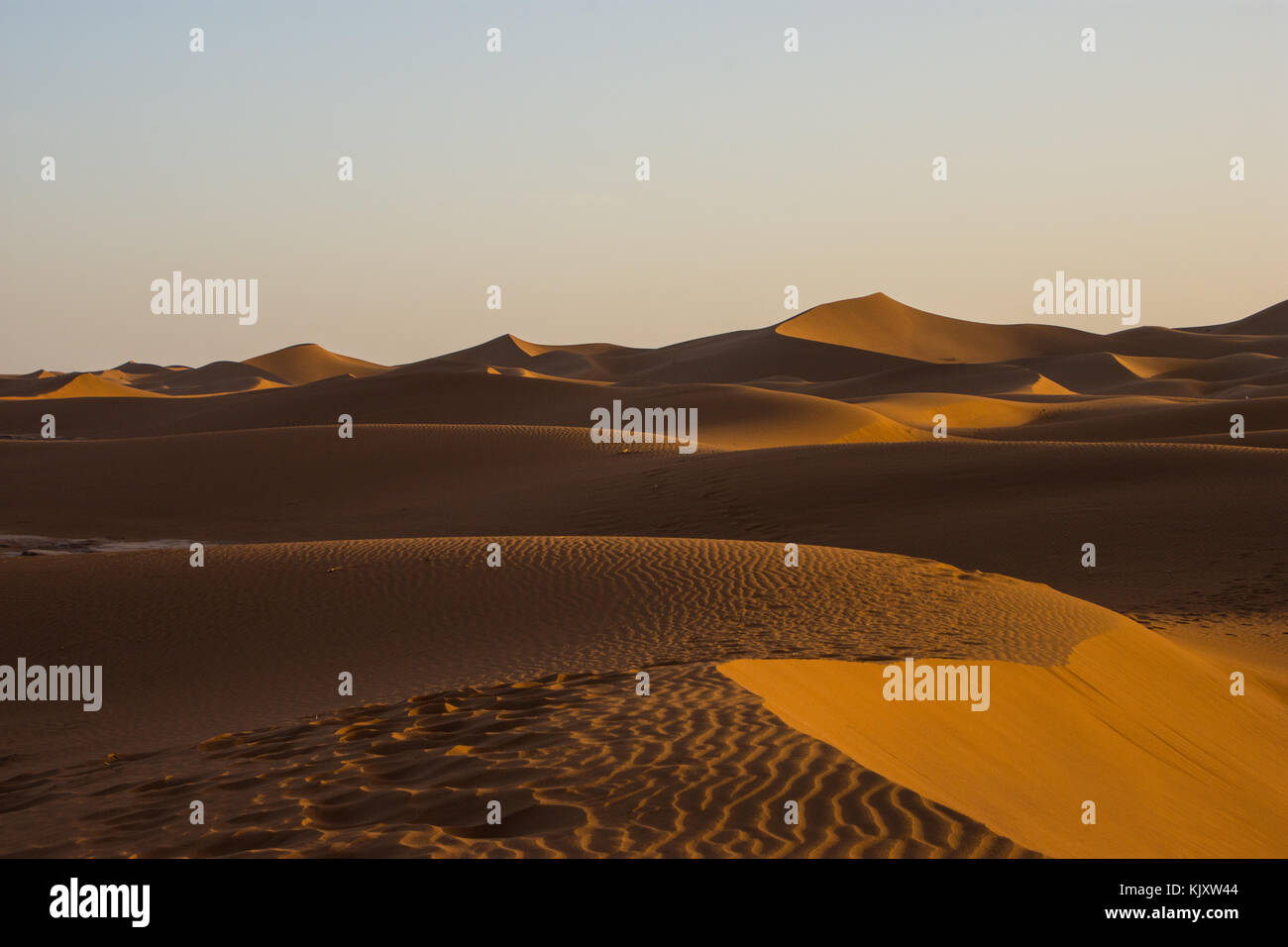 The largest desert in the world 48