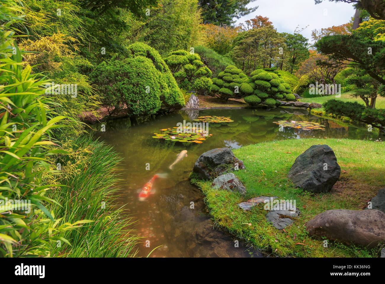 japanese garden fish japan tea garden stock photos japan tea garden stock
