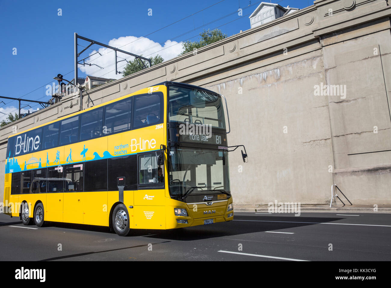 yellow double decker northern beaches b line bus buses were stock