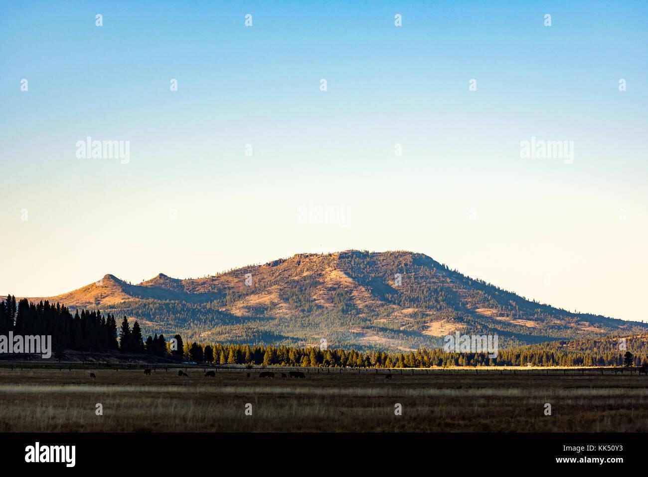 Plumas national forest stock photos plumas national for Sierra valley