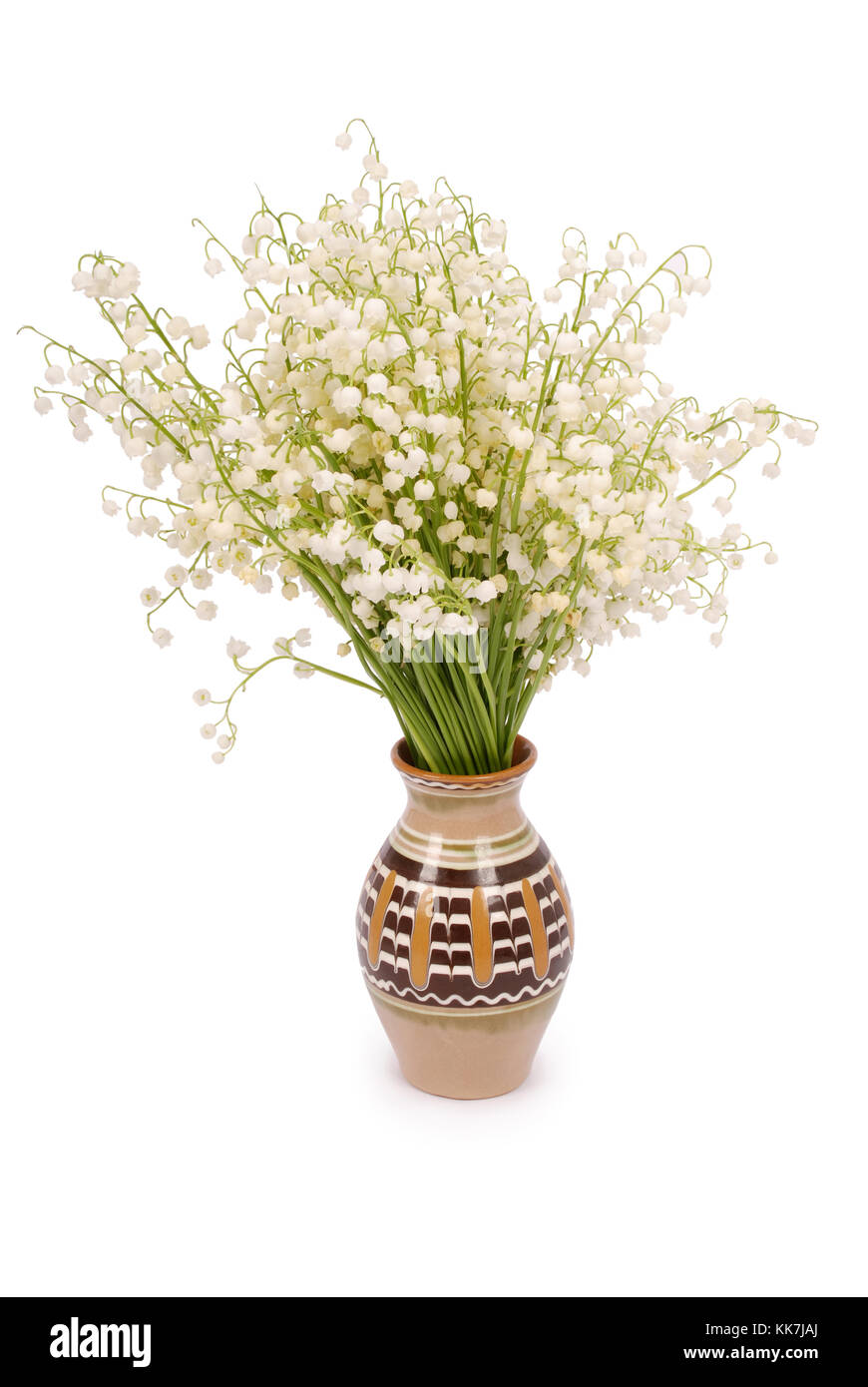 Bouquet lily of the valley in a pot isolated on white background bouquet lily of the valley in a pot isolated on white background with soft shadow izmirmasajfo