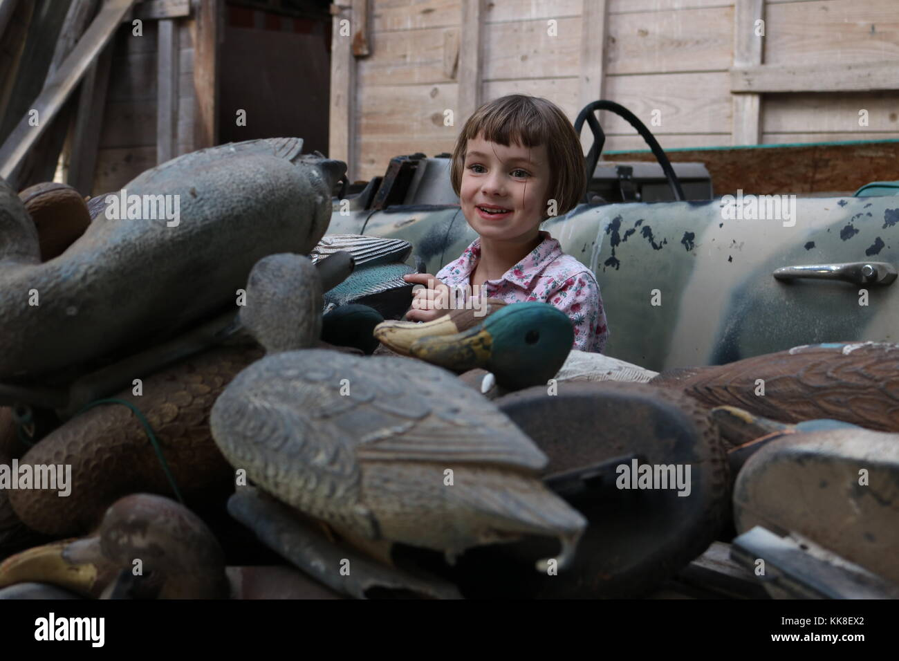 Duck Decoys Stock Photos & Duck Decoys Stock Images - Alamy - photo#24