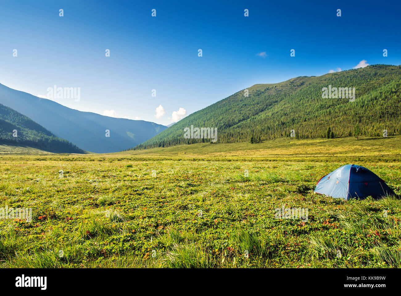 Picturesque landscape tourist tent on mountain meadow field dawn sunrise backpacking against background of high mountain wild nature ecological to & Picturesque landscape tourist tent on mountain meadow field dawn ...