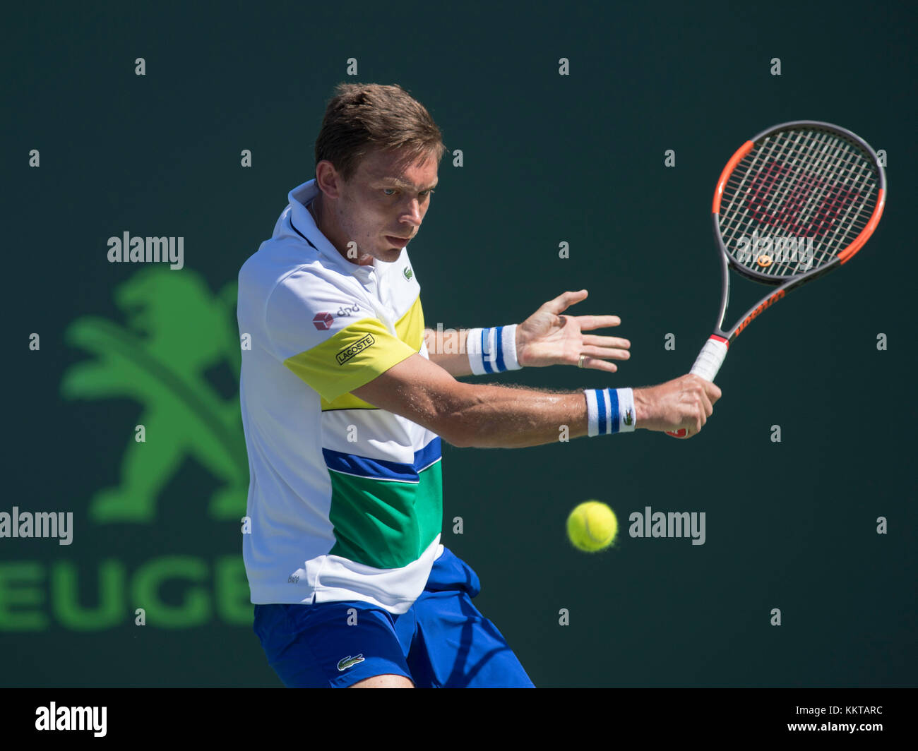 crandon asian singles Tennis center at crandon park: champions men's singles roger federer: the 2017 miami open presented the following players received wildcards into the.