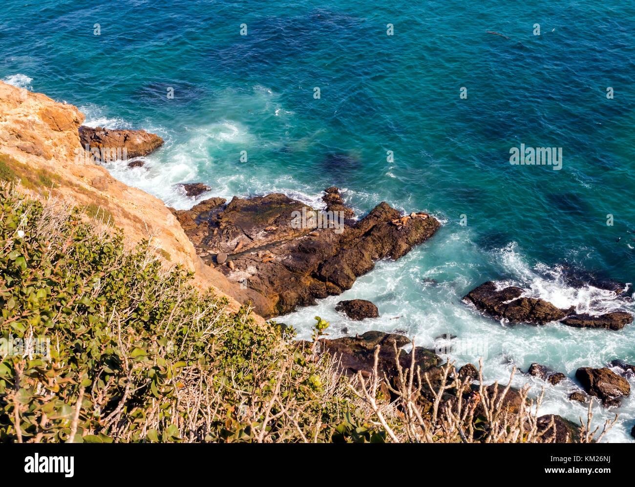 Paradise Cove Beach Cafe Malibu Ca Usa
