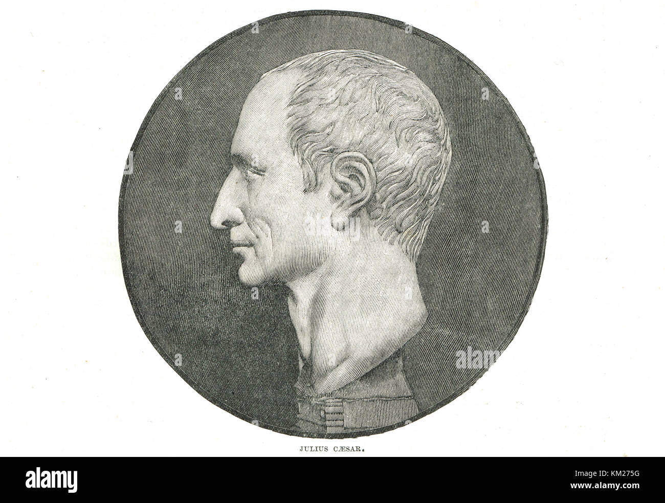 a biography of julius caesar a roman dictator Julius caesar was a dictator that turned the roman republic to the roman empire even though the life time of julius caesar took place in 100 bc – 44 bc, people everywhere will mention caesar's name and legacy.