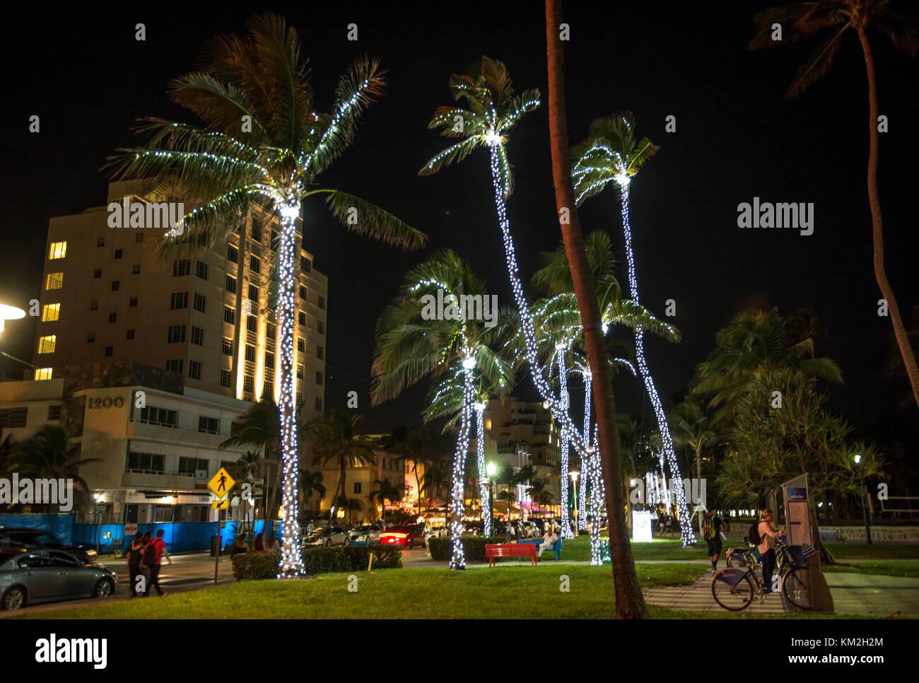 Miami Beach, FLORIDA, USA. 3rd Dec, 2017. Palm trees with sparkling ...