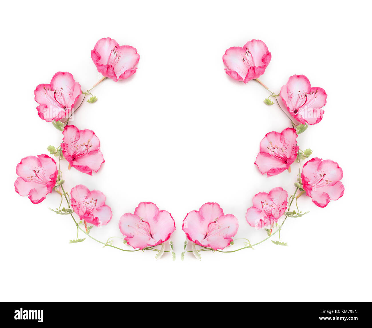 Floral Wreath With Pink Flowers On White Background Top View Stock