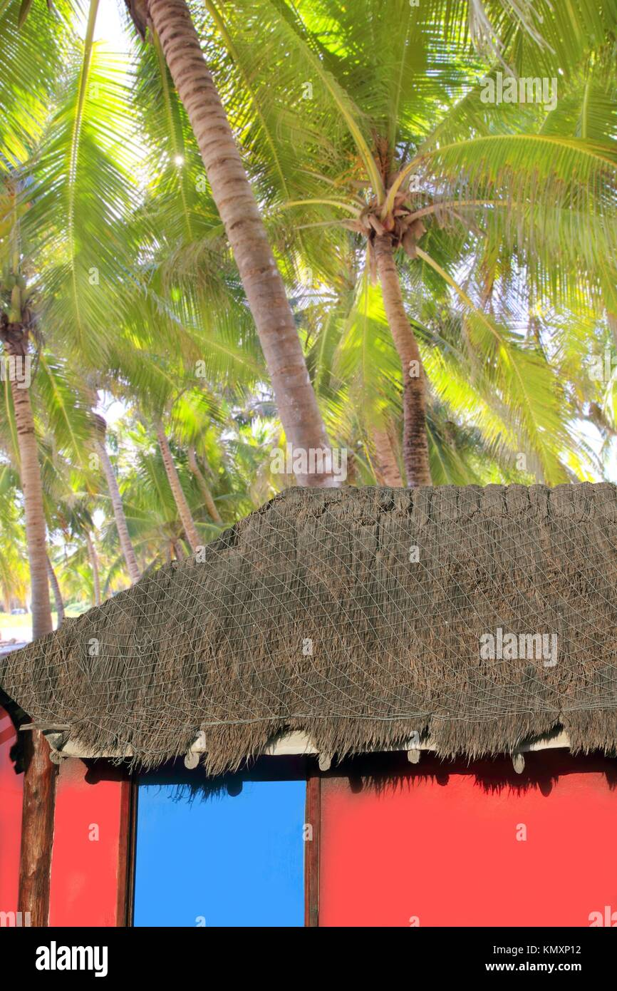 Caribbean hut red colorful house coconut palm trees background Stock ...