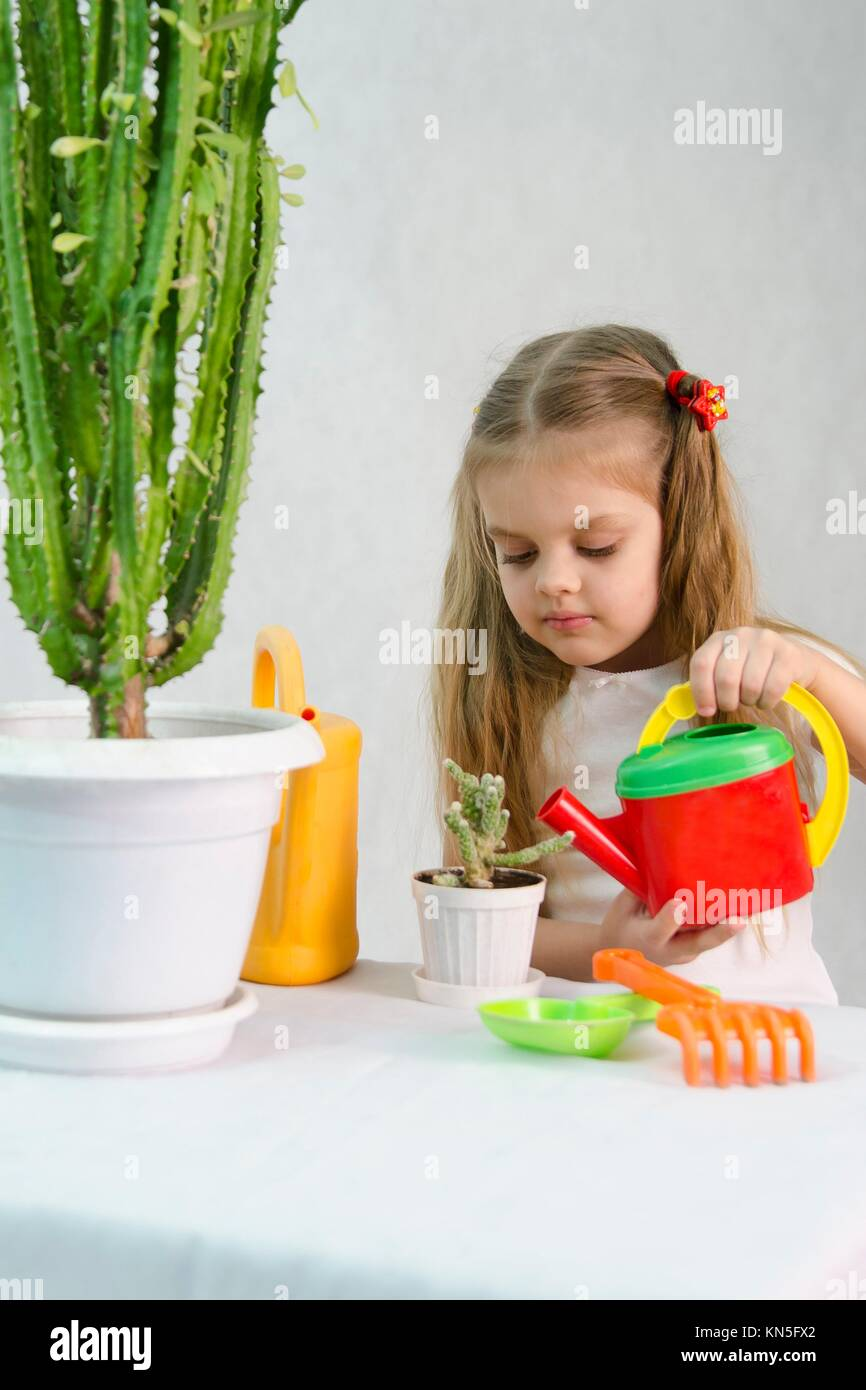 house plant watering spikes html with Watering Cactus on Propagation moreover Haworthia moreover Stock Photo Water Hyacinth Growing In A Small Pond 89909571 likewise Stock Photo Water Hyacinth Growing In A Small Pond 89909571 also 13576 Rookie Cymbidium Owner Knowledge Veterans.