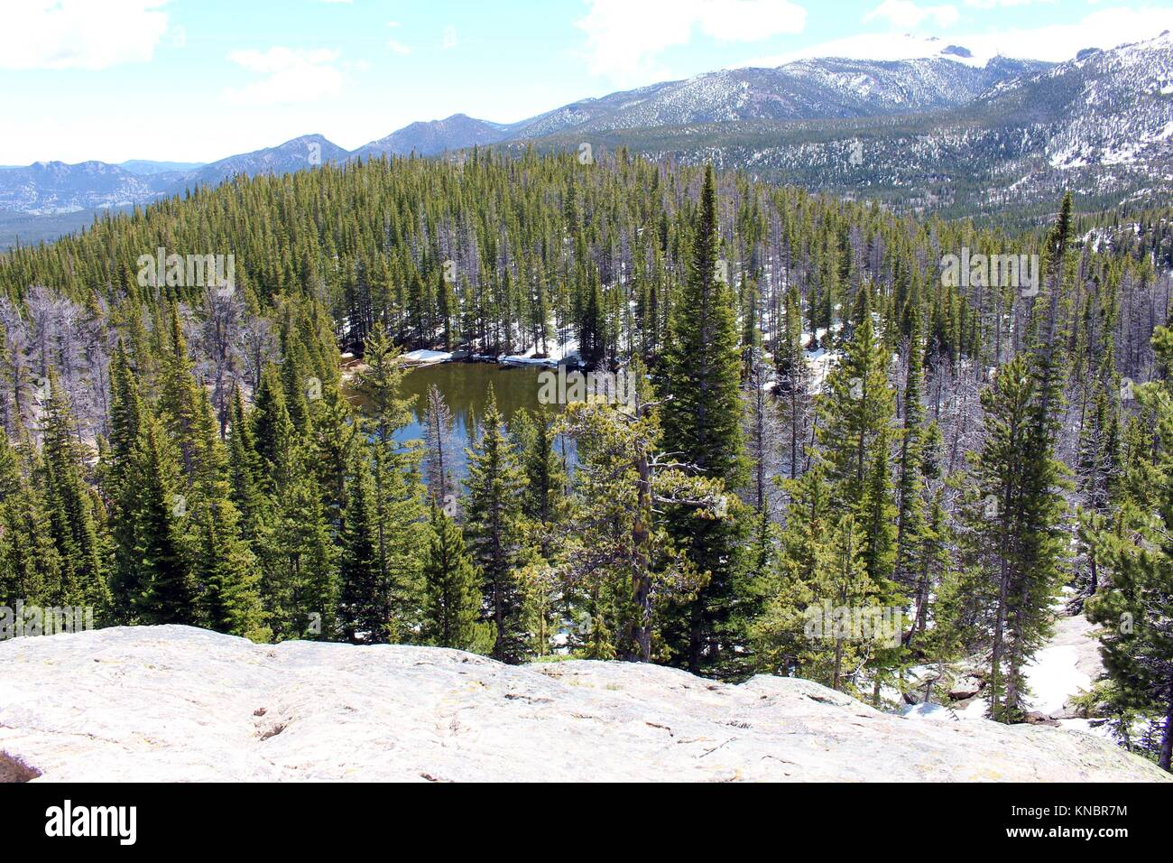 Looking Down Onto Nymph Lake And A Pine Forest From A Higher Stock - Higher elevation