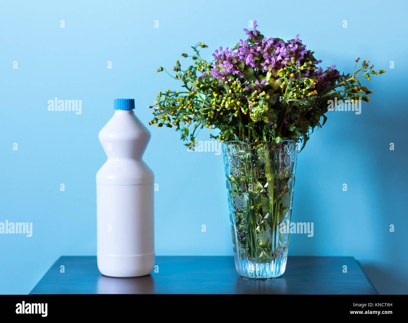 Plastic vase stock photos plastic vase stock images alamy vase flower and white plastic bottle stock image reviewsmspy