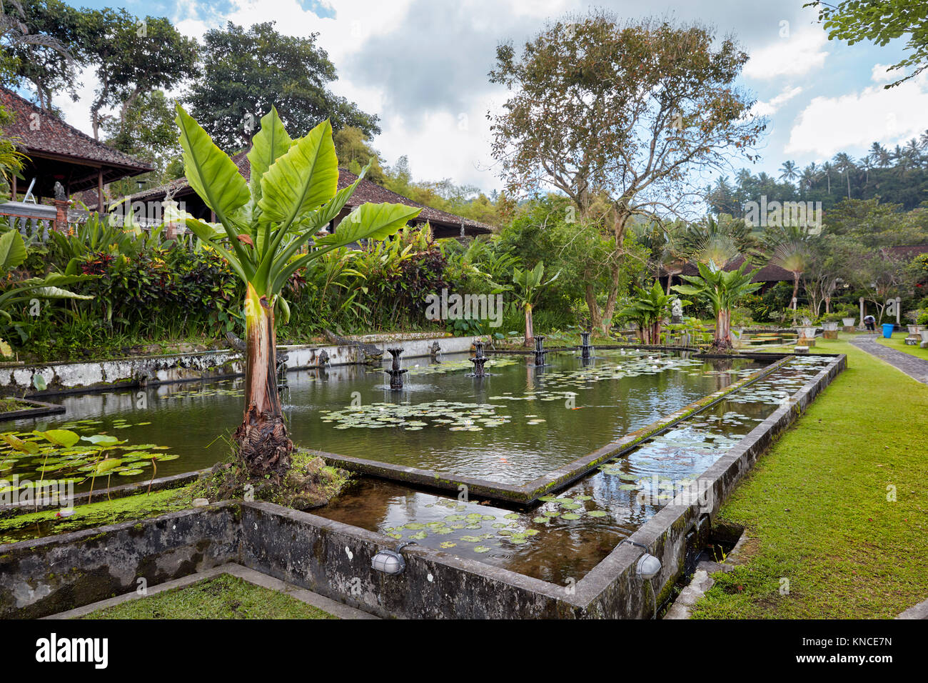 Tirta Gangga Royal Water Garden: Lush Garden With Pond Stock Photos & Lush Garden With Pond