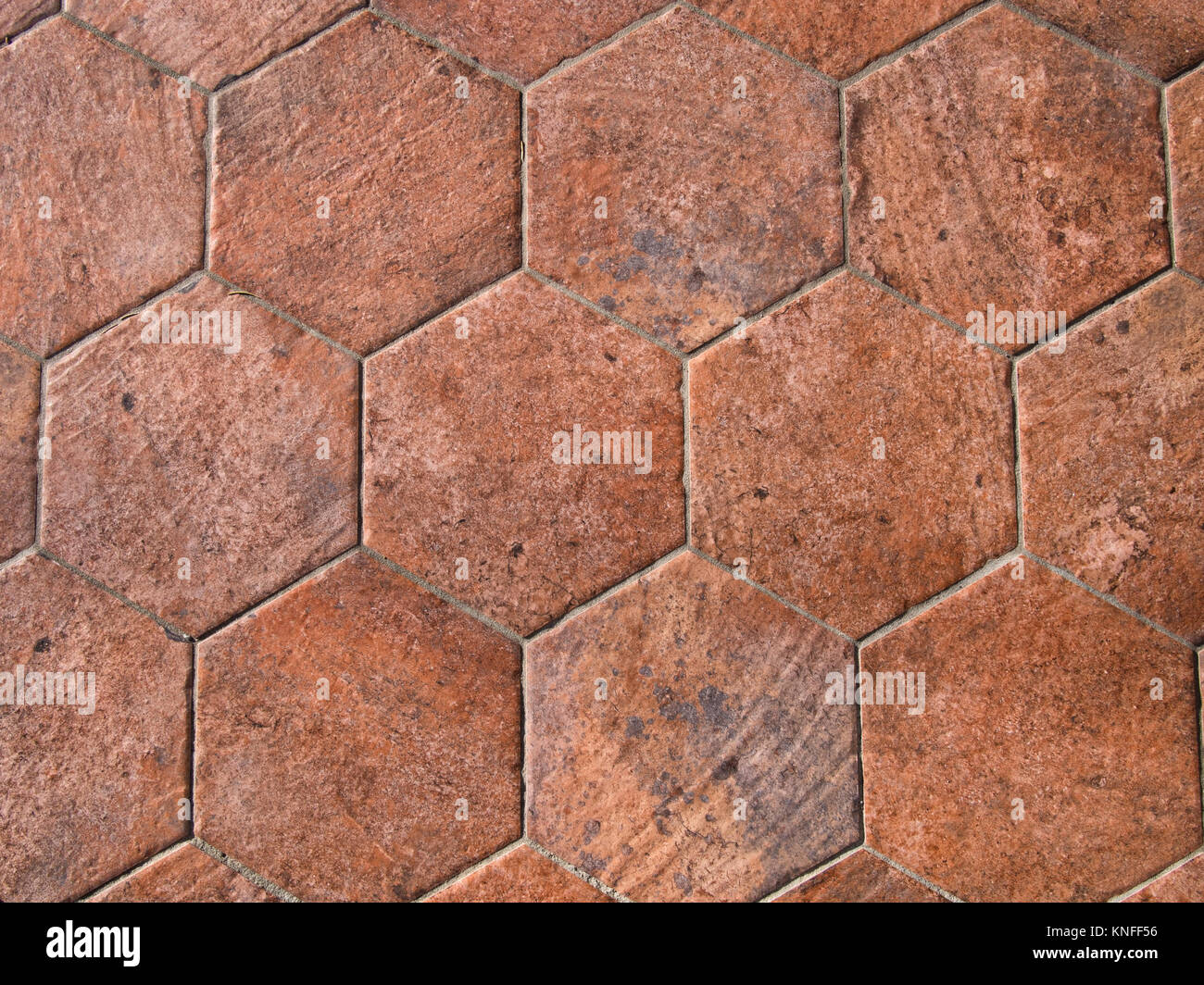 Hexagonal terracotta floor tile