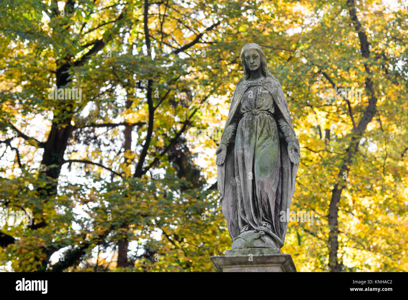 Statue of mary mother of god at autumn tree backgroung copy statue of mary mother of god at autumn tree backgroung copy space religious symbol buycottarizona