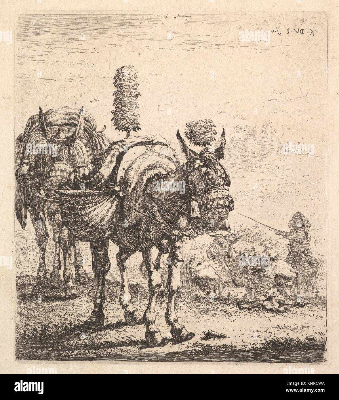 Two Mules Bearing Panniers And Outfitted With Blinders Plumes And