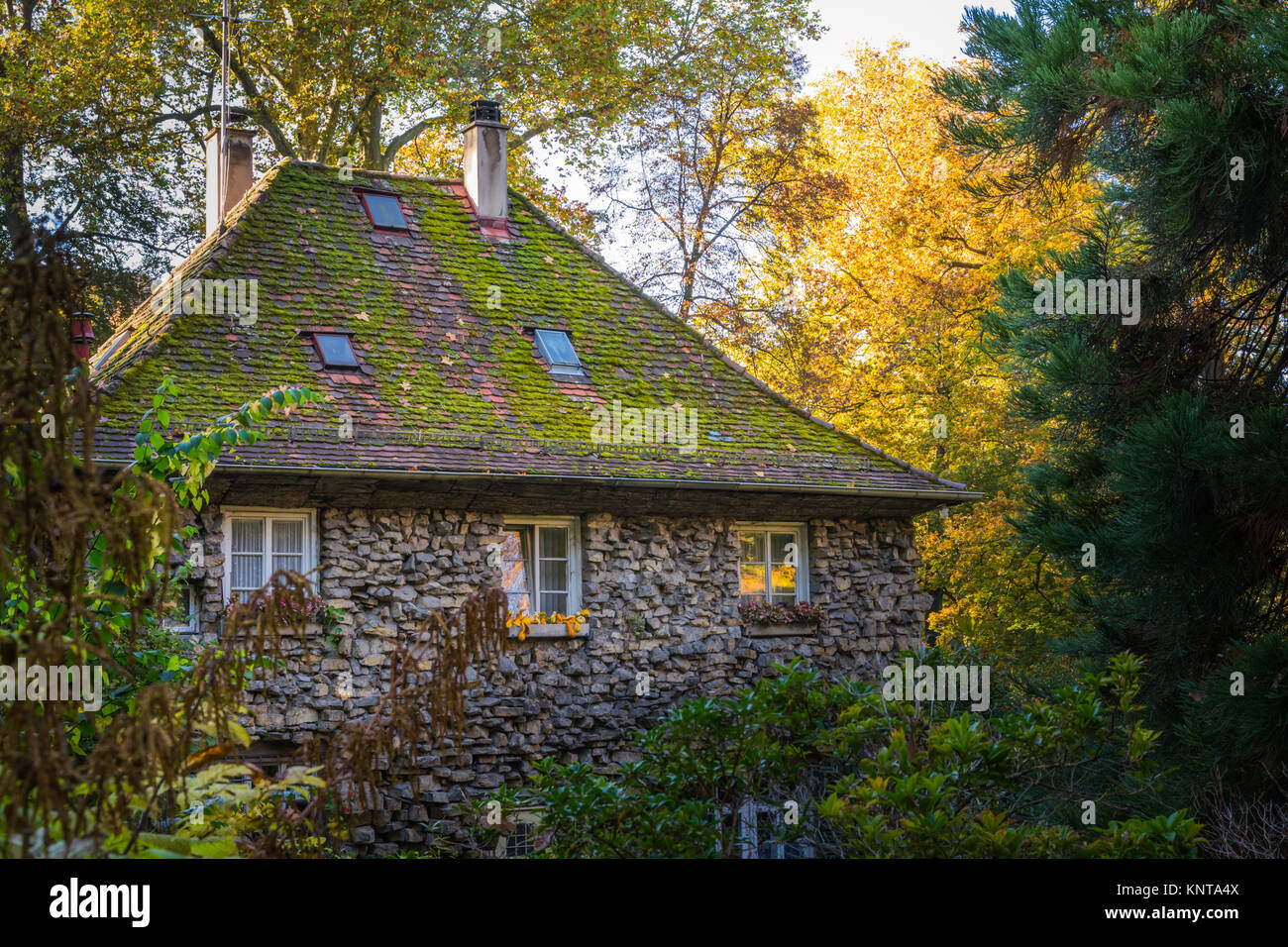 Large Old Stone House Forest Fantasy Fairy Tale German Woods Cottage Structure Green Autumn Fall Season Chimney Exterior