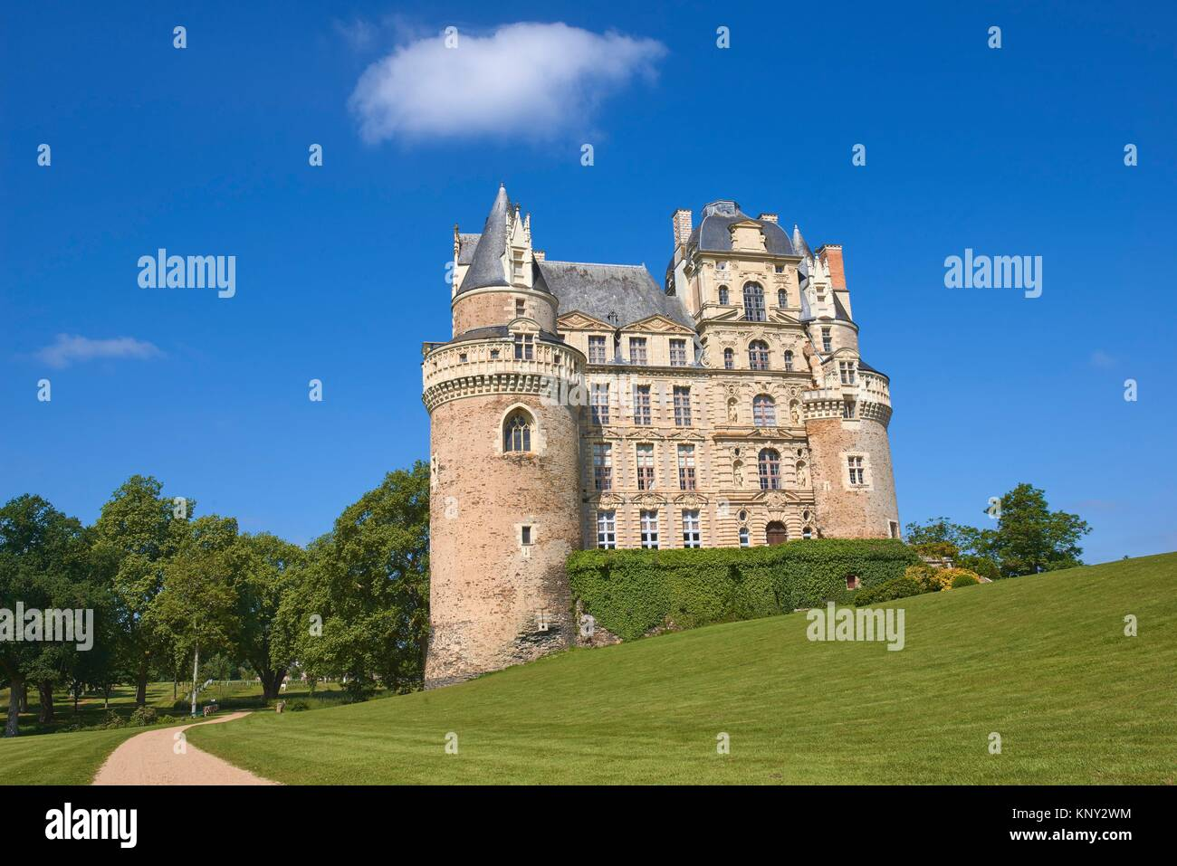 Quince stock photos quince stock images alamy brissac castle brissac quince angers district maine et loire department biocorpaavc Image collections