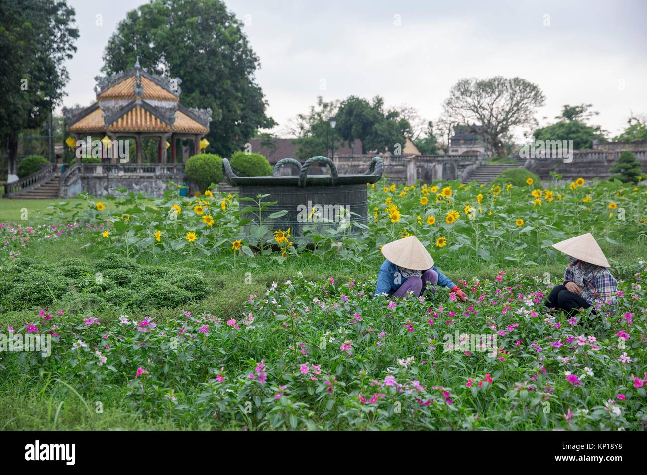 workers in a flower garden hu imperial city vietnamese hat hue hu imperial city vietnam - Vietnamese Garden