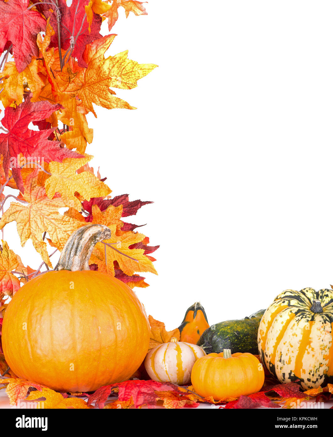 pumpkin and gourds with autumn leaf border on a white background