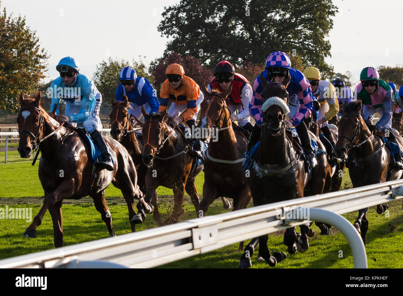 Horses Galloping From The Start At York Races End Of 2017 Season