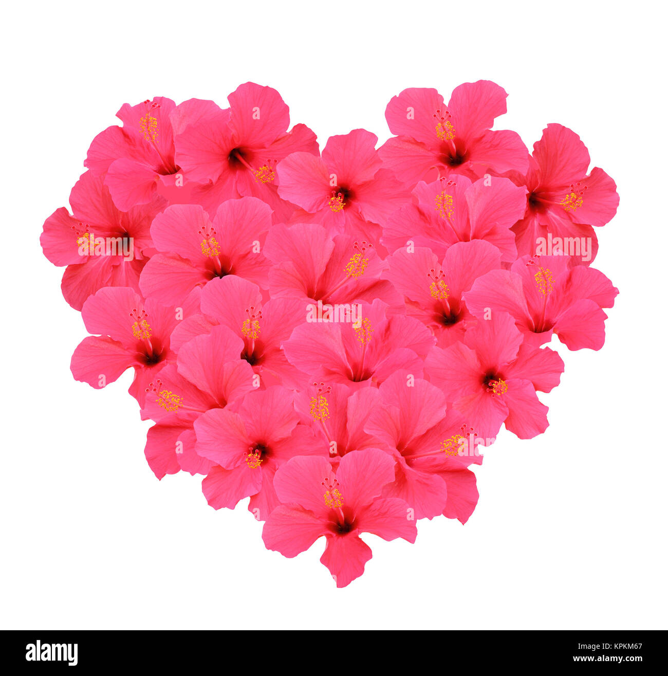 Heart Shape Bouquet Made Of Hibiscus Flowers Isolated On White