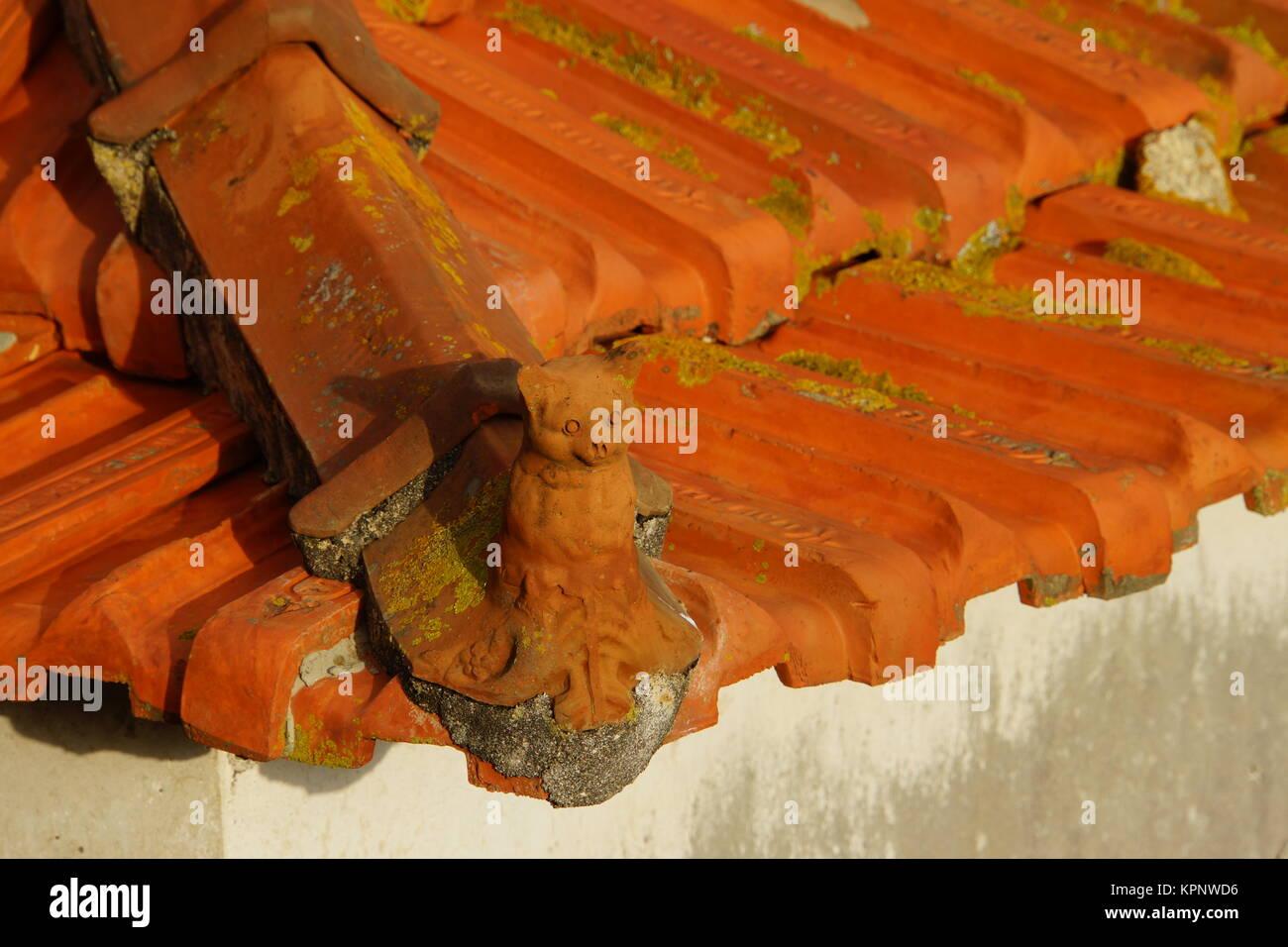 canico madeira stock photos canico madeira stock images. Black Bedroom Furniture Sets. Home Design Ideas