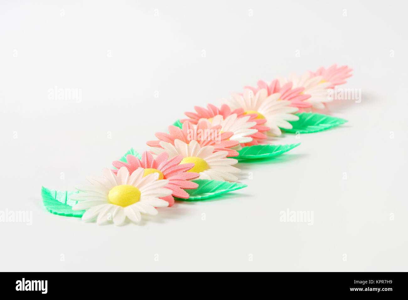 Wafter Paper Daisy Flowers Stock Photo 168926613 Alamy
