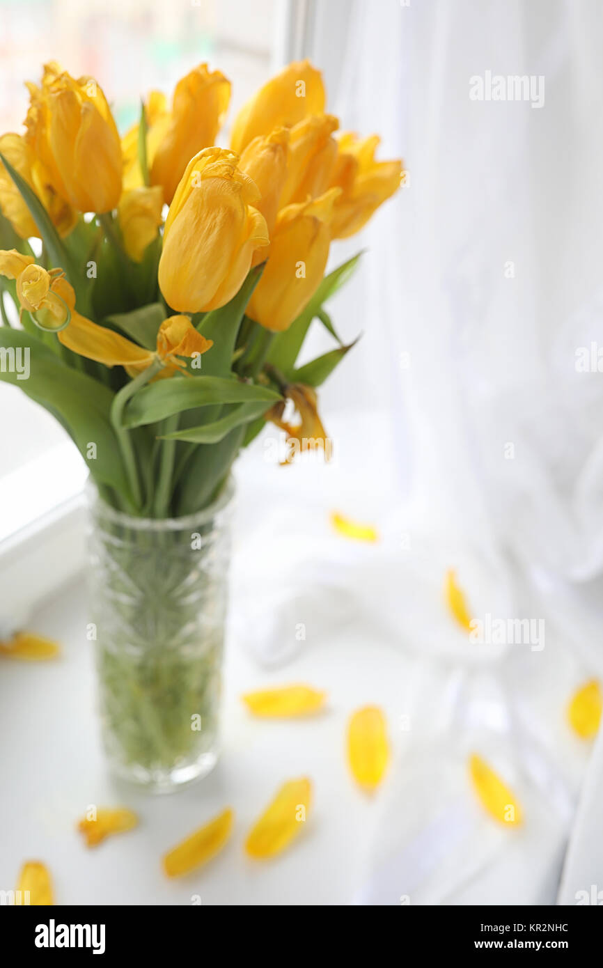 A bouquet of yellow tulips in a vase on the windowsill a gift t a bouquet of yellow tulips in a vase on the windowsill a gift t floridaeventfo Gallery