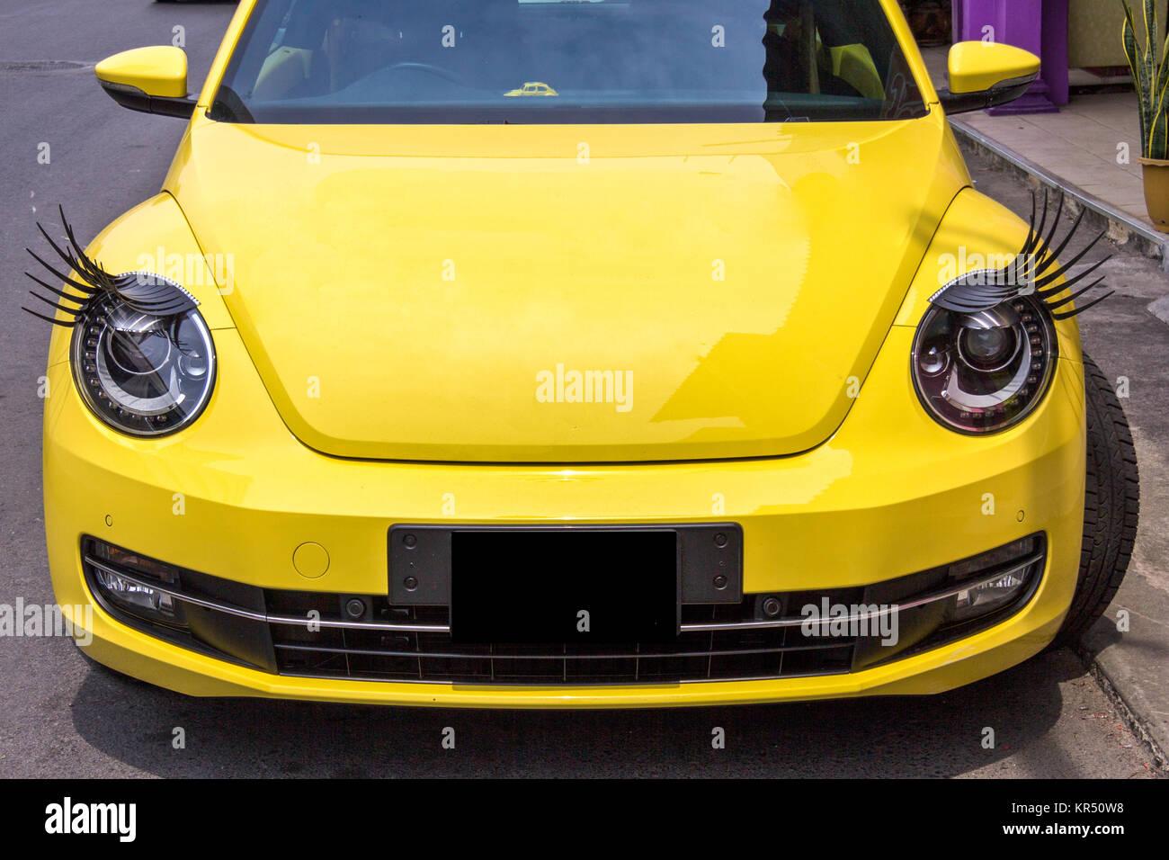 Headlight Beetle Stock Photos & Headlight Beetle Stock Images - Alamy