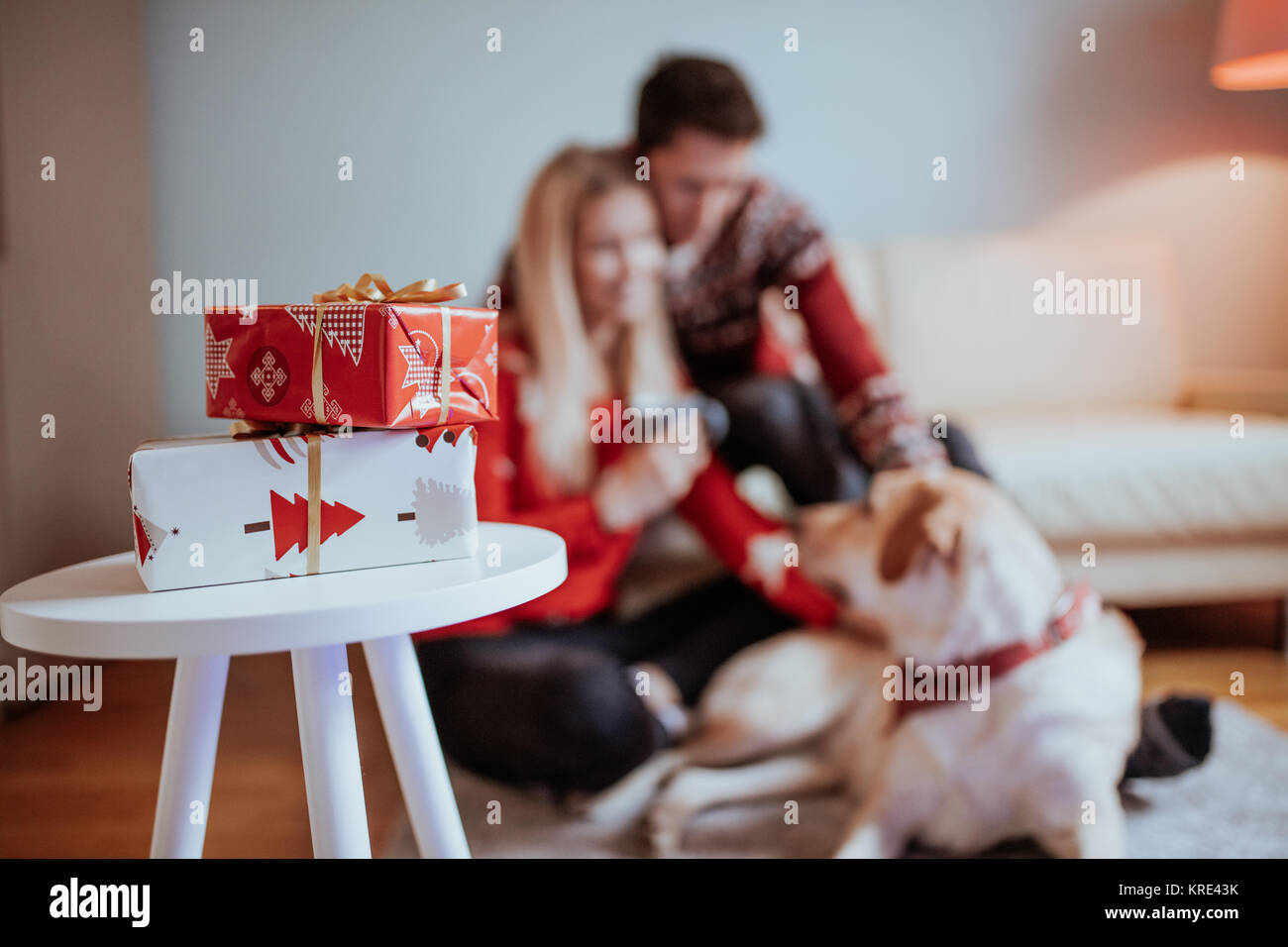 Christmas gifts and happiness between a young couple and a cute dog ...