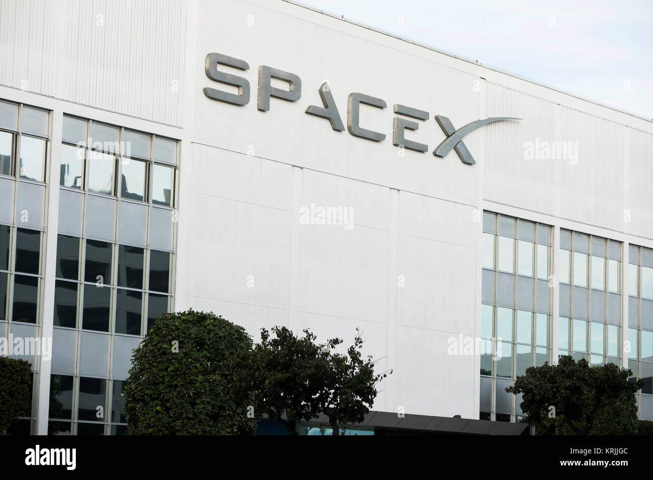 Spacex employee stock options