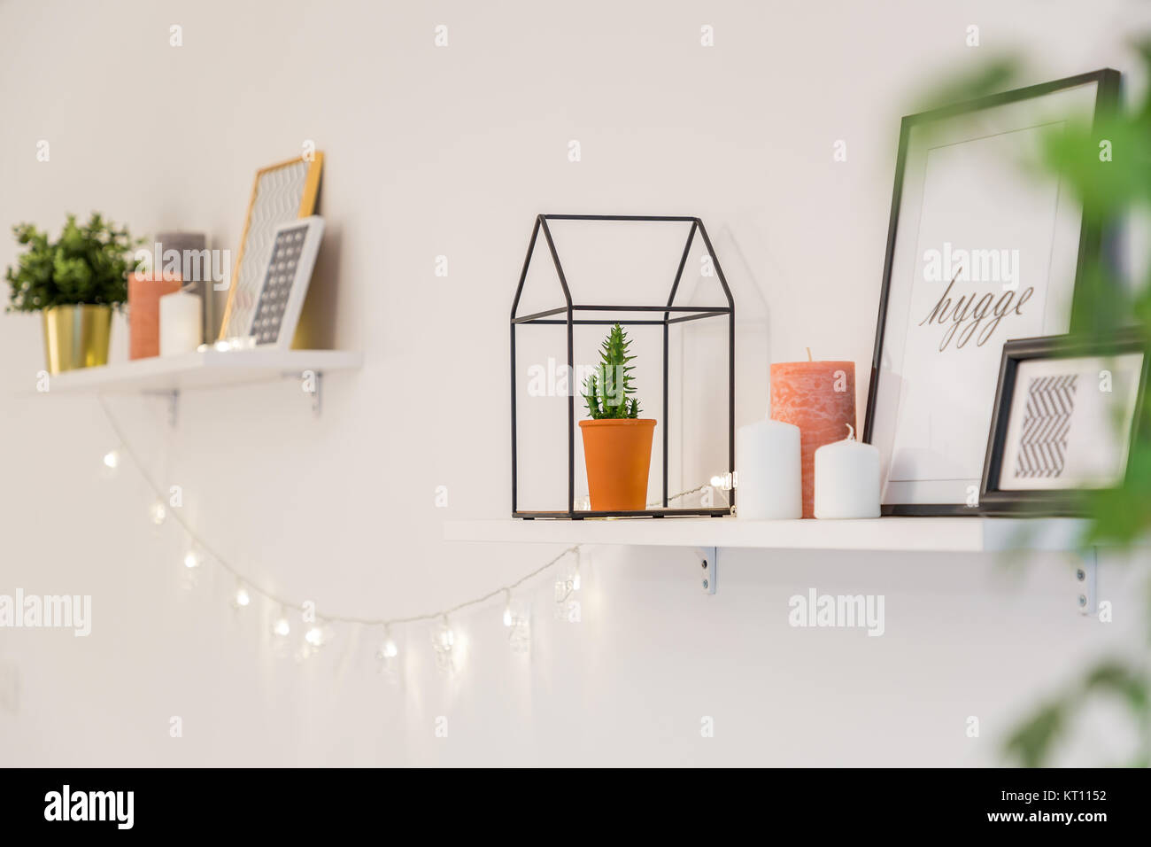 shelves with frames plants lights and other decorations in stock