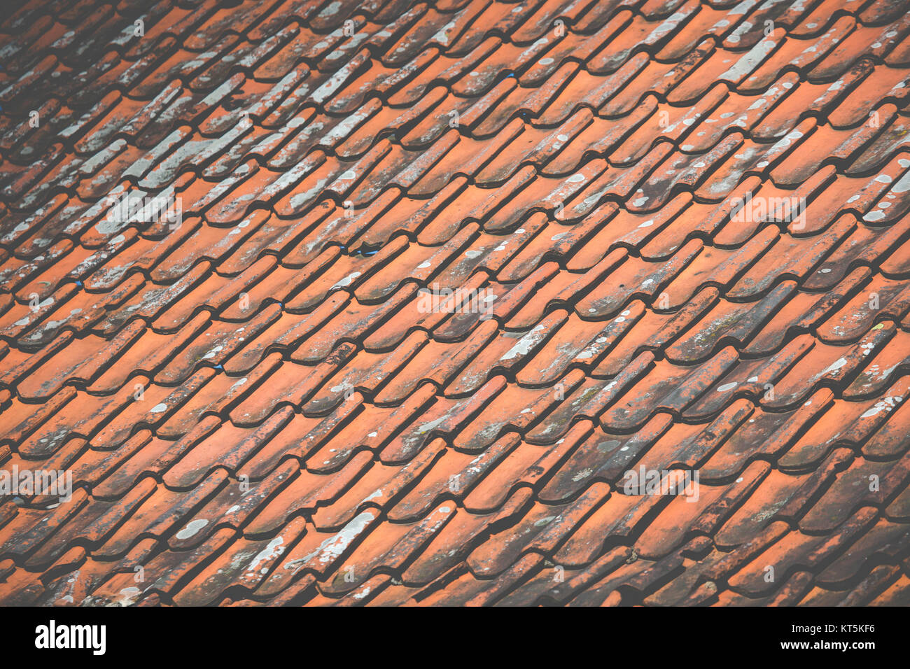 Home Roofing Design Stock Photos Amp Home Roofing Design