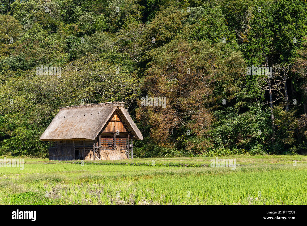Old wooden house mountain forest stock photos old wooden for Traditionelles thai haus
