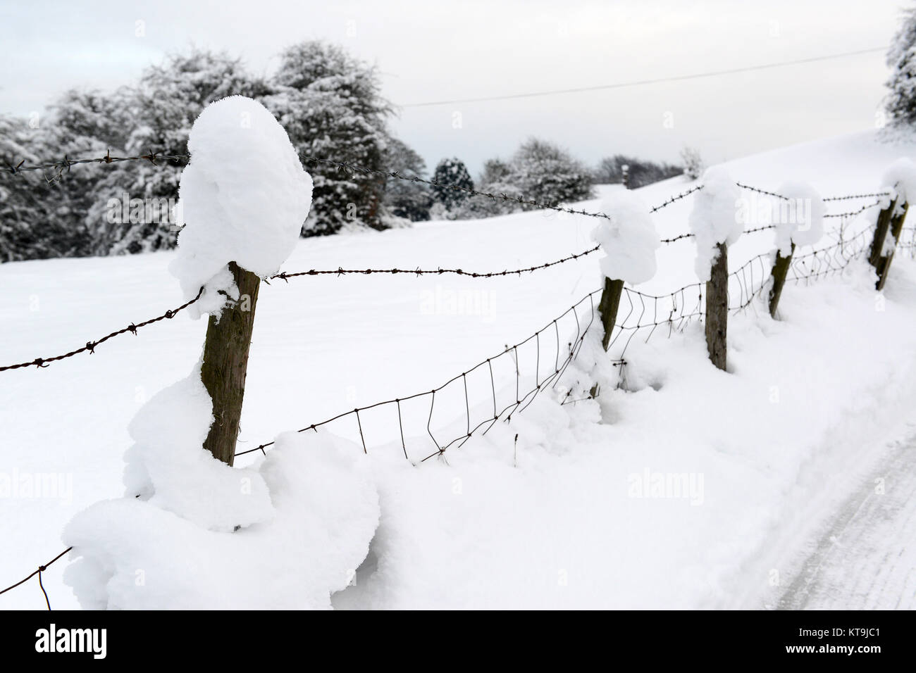 On Barbed Wire Fence Stock Photos & On Barbed Wire Fence Stock ...