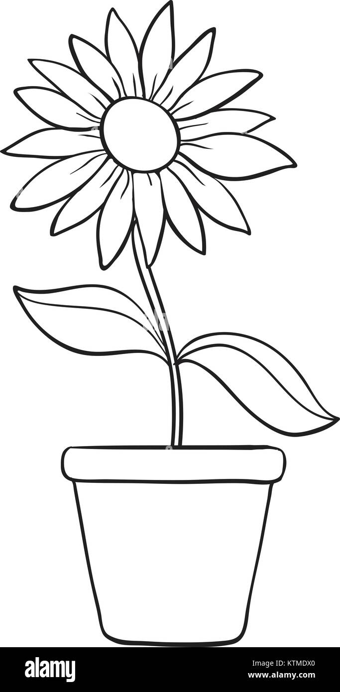 Illustration Of A Flower And A Pot Sketch On White Background Stock