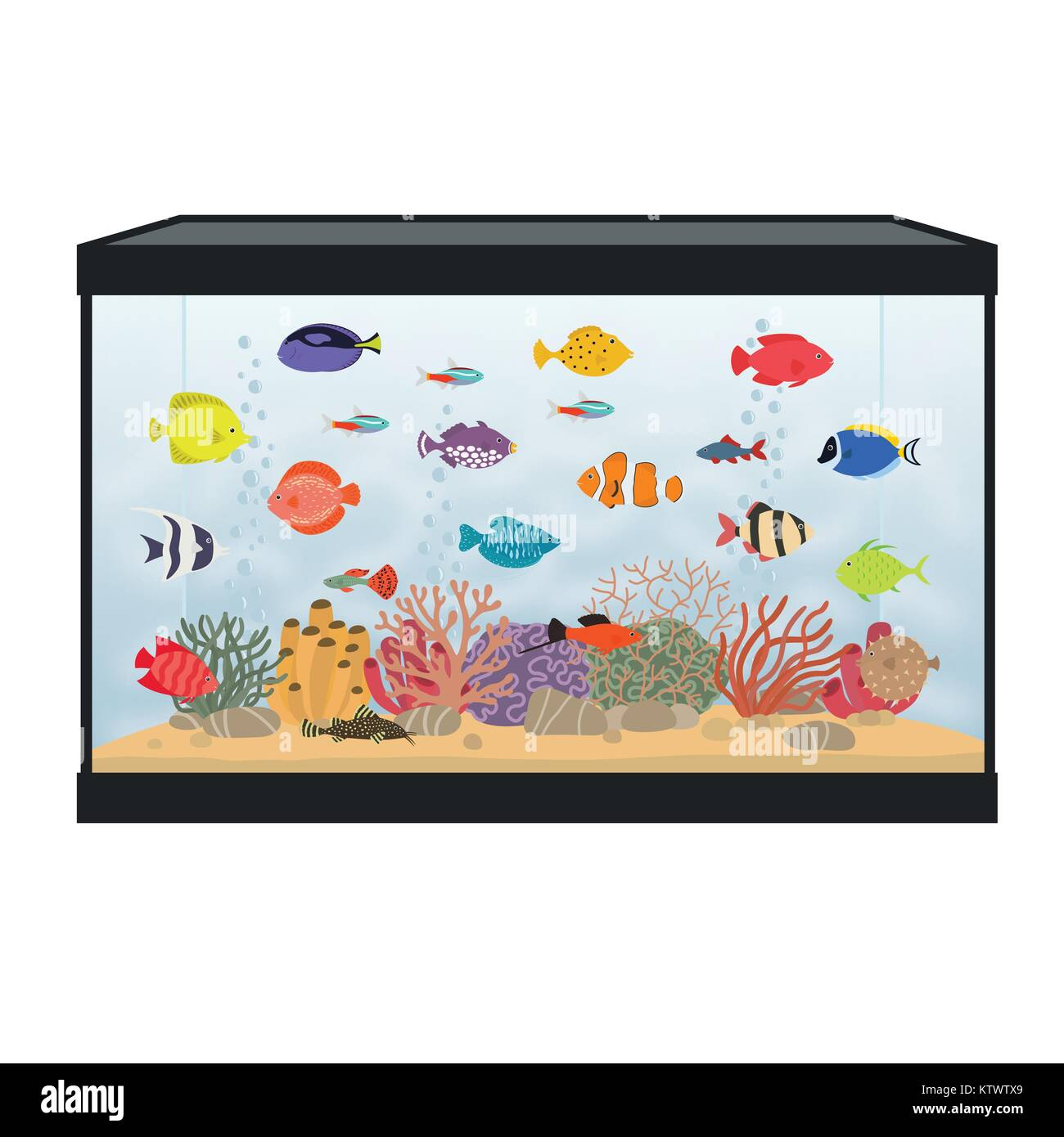 Guppies Stock Photos Guppies Stock Images Alamy