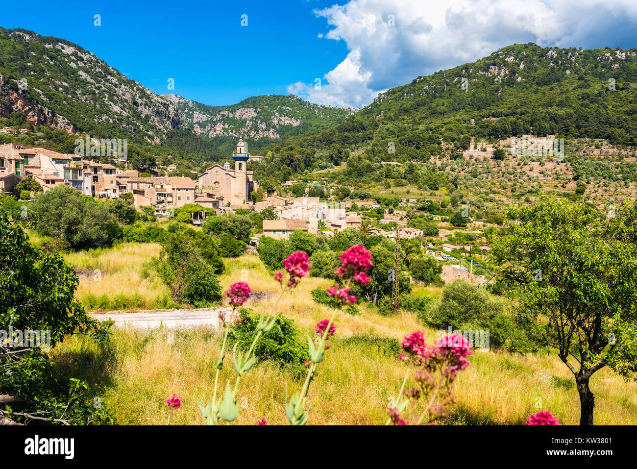 valldemosa women Learn about star collector: ancient to avant-garde mediterranean shore excursions with fewer than 300 guest per cruise, you get more time on land to explore voyage date.