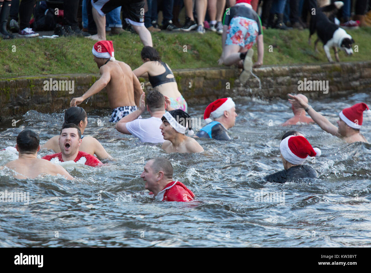 Christmas swim uk stock photos christmas swim uk stock Swimming pool sutton coldfield