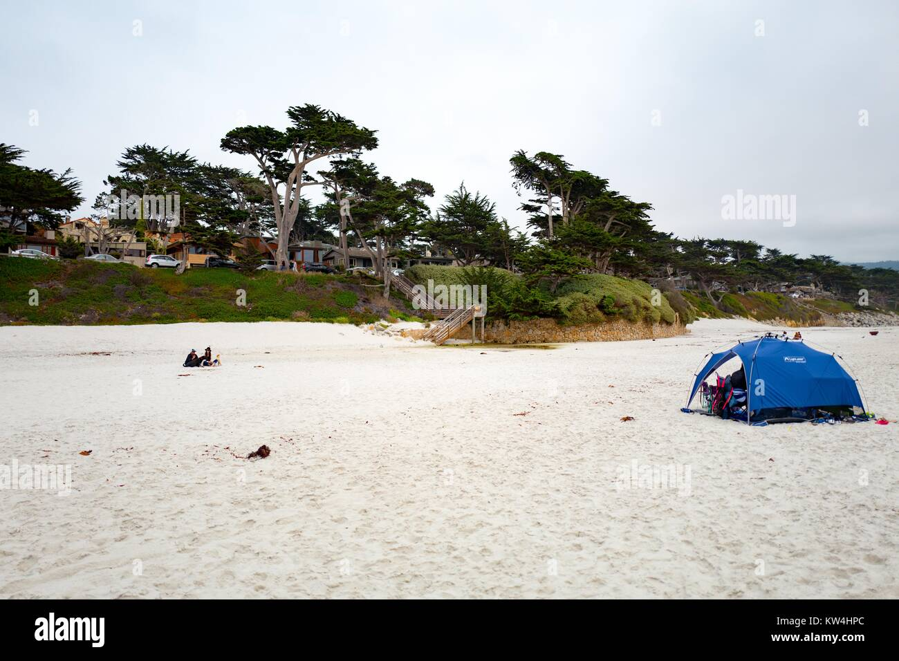 on a cold and cloudy day in carmel-by-the-sea, california, visitors