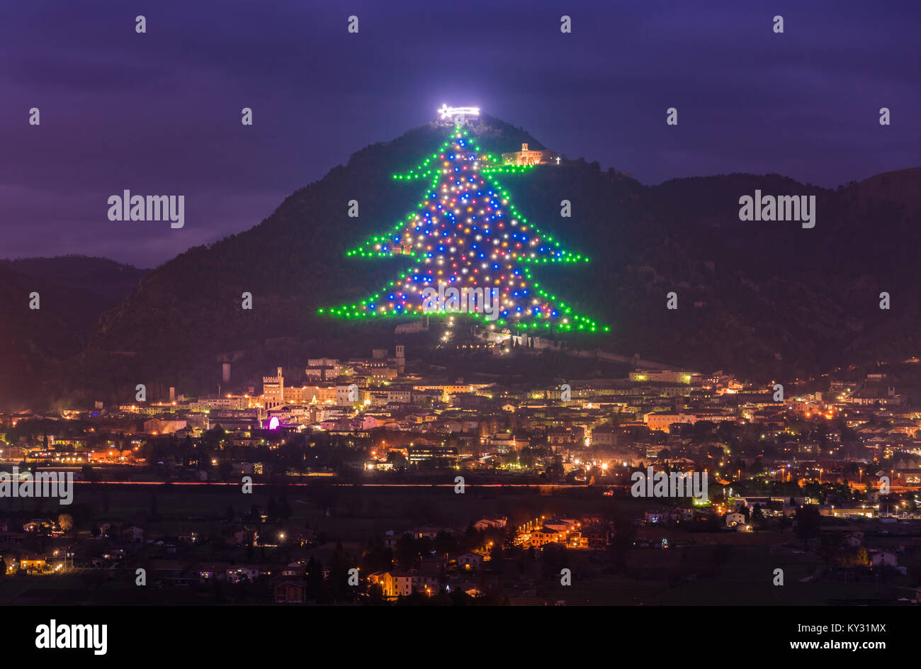 The Biggest Most Beautiful Christmas Tree