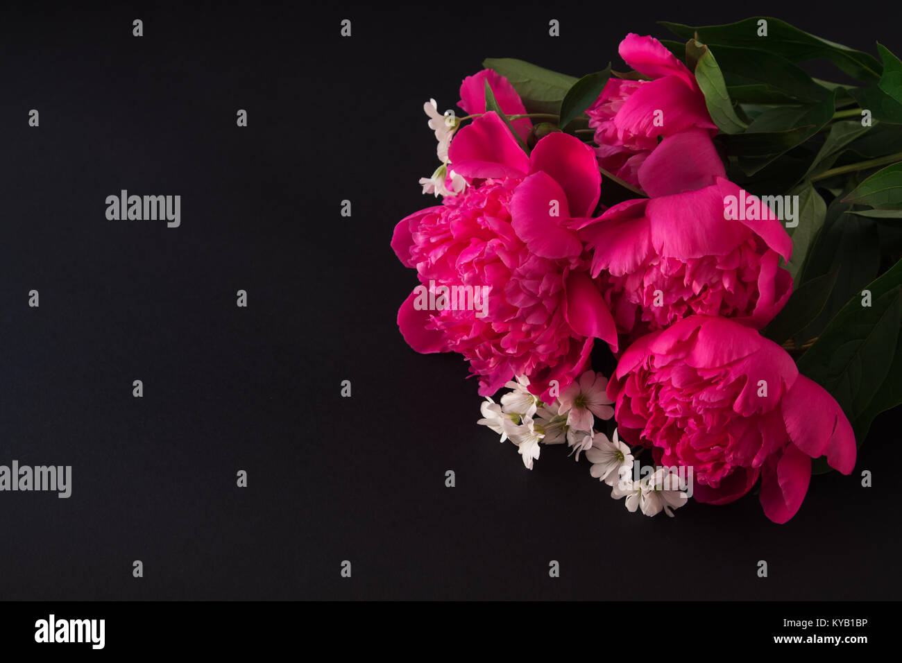 bouquet of pink peony and small white flowers closeup on dark Stock ...