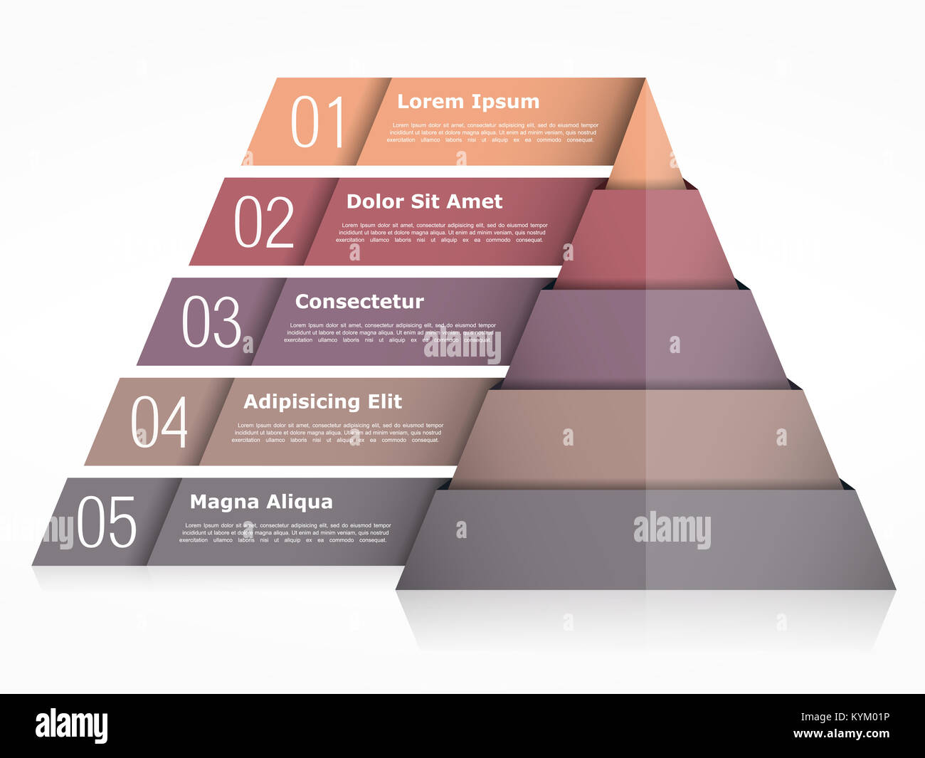 pyramid chart with five elements pyramid infographics template
