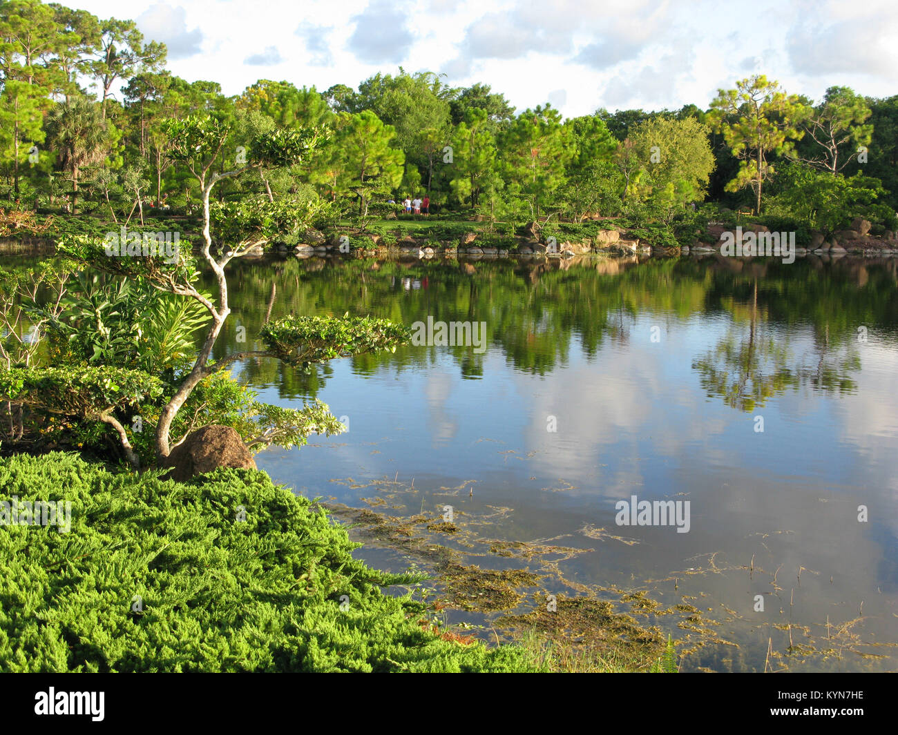 Palm Beach Gardens Florida Stock Photos & Palm Beach Gardens Florida ...