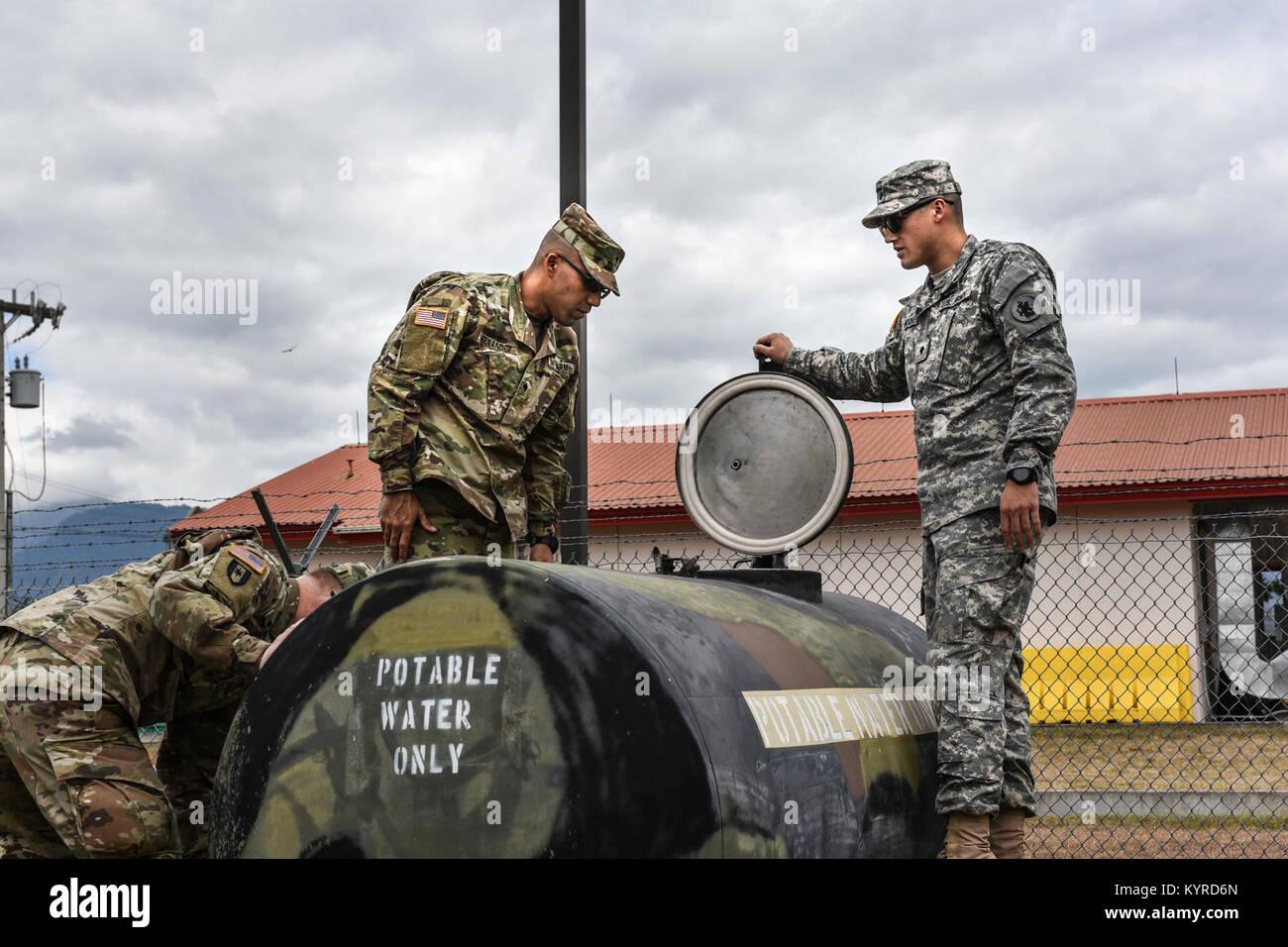 Water buffalo army - photo#51