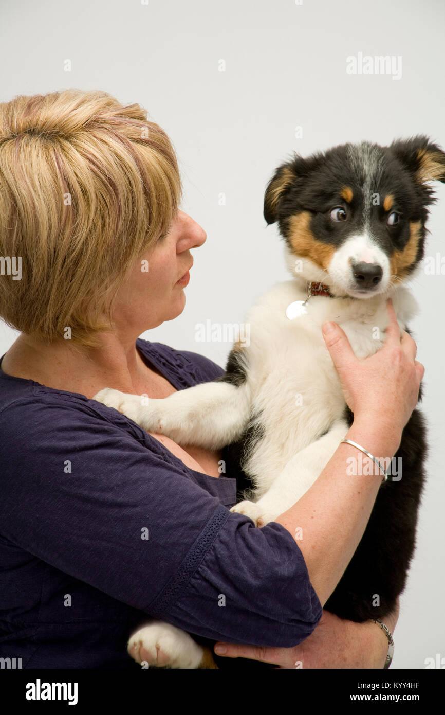 cuddle puppy stock photos  u0026 cuddle puppy stock images