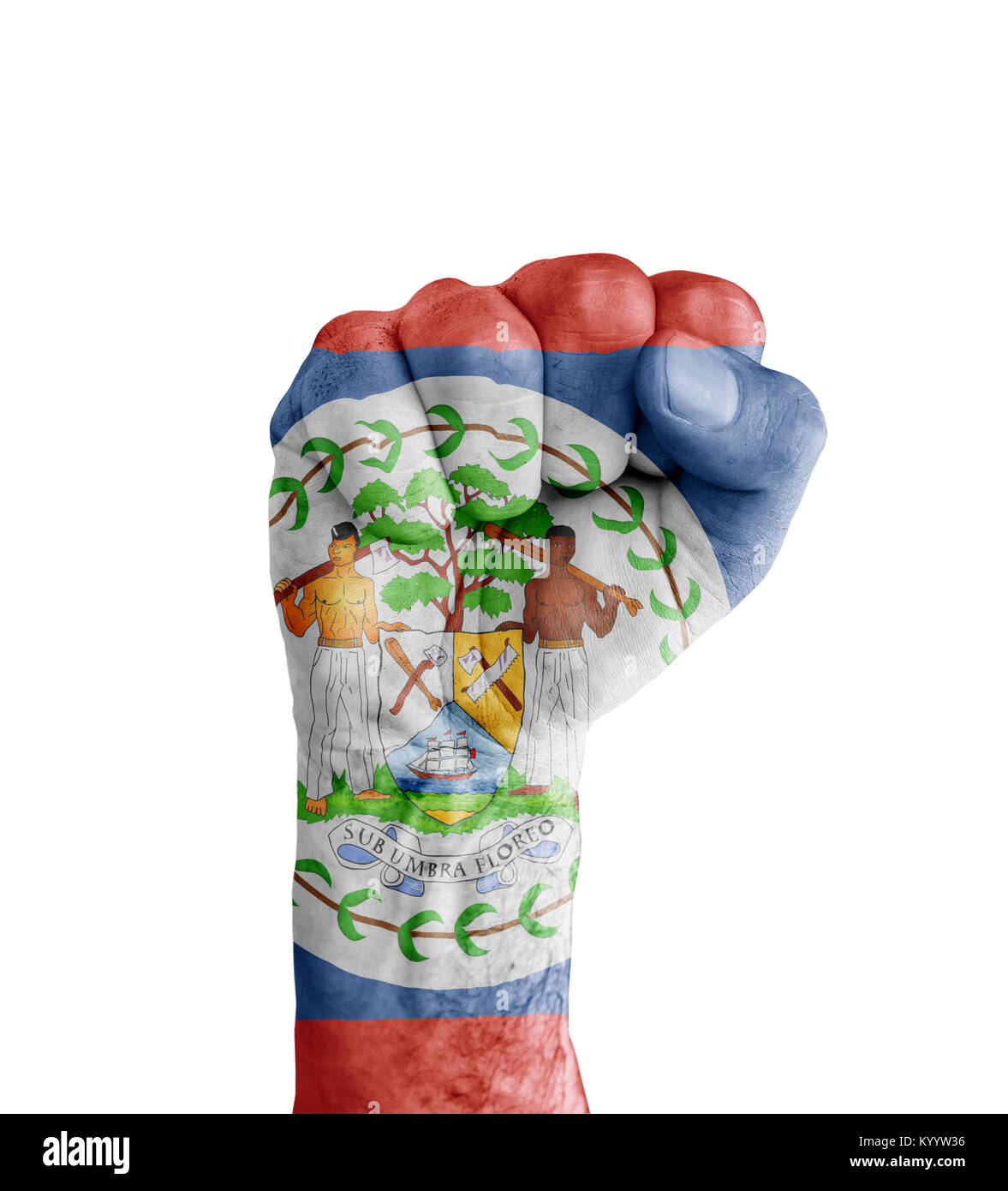 Flag of belize stock photos flag of belize stock images alamy flag of belize painted on human fist like victory symbol stock image biocorpaavc Image collections