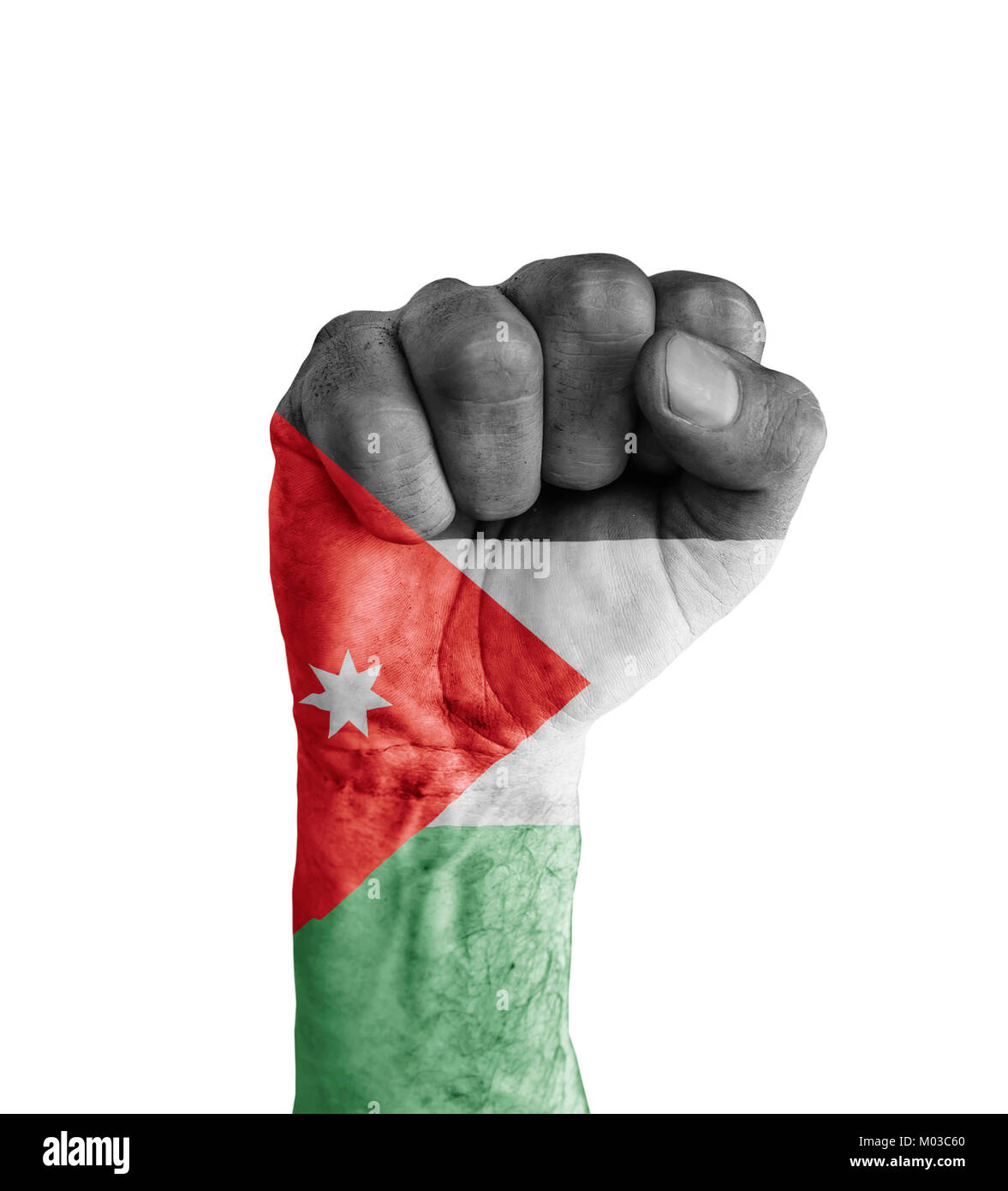 Flag of jordan stock photos flag of jordan stock images alamy flag of jordan painted on human fist like victory symbol stock image biocorpaavc Gallery