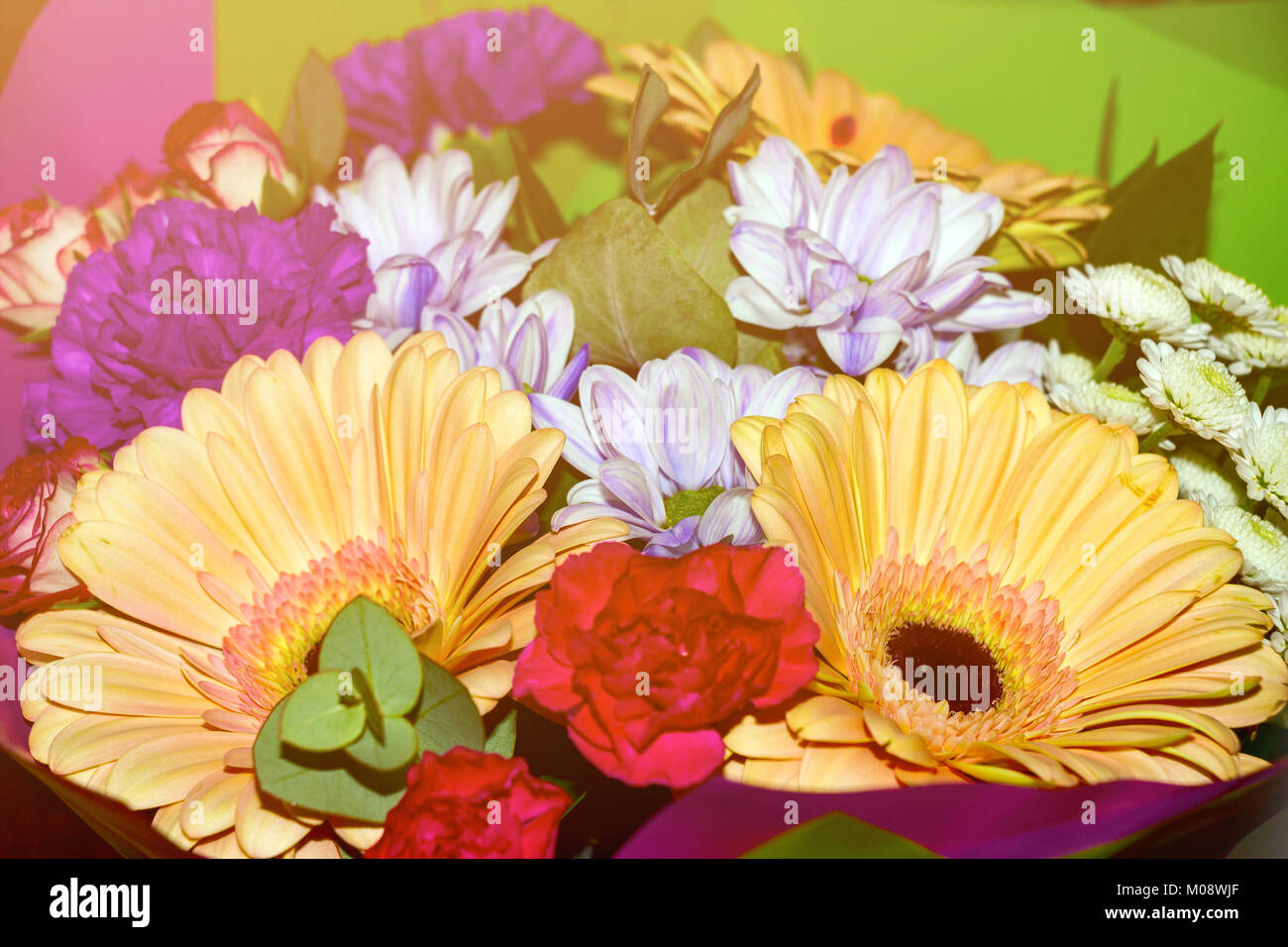 Bouquet of different flowers in sunlight stock photo 172299415 alamy bouquet of different flowers in sunlight izmirmasajfo